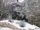 jardin sous la neige