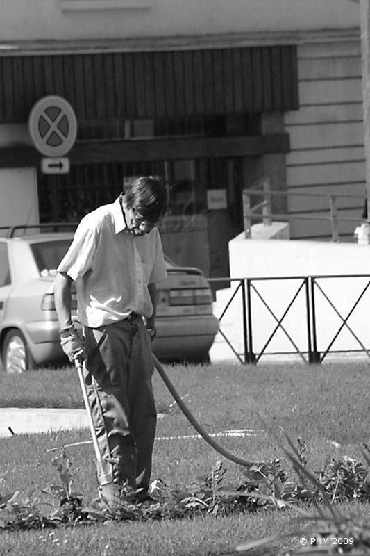 Jardinier municipal