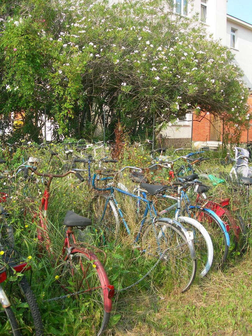 Jardins à vélos ...