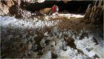 Jarrito - Gran Paleocaverna de Bellamar