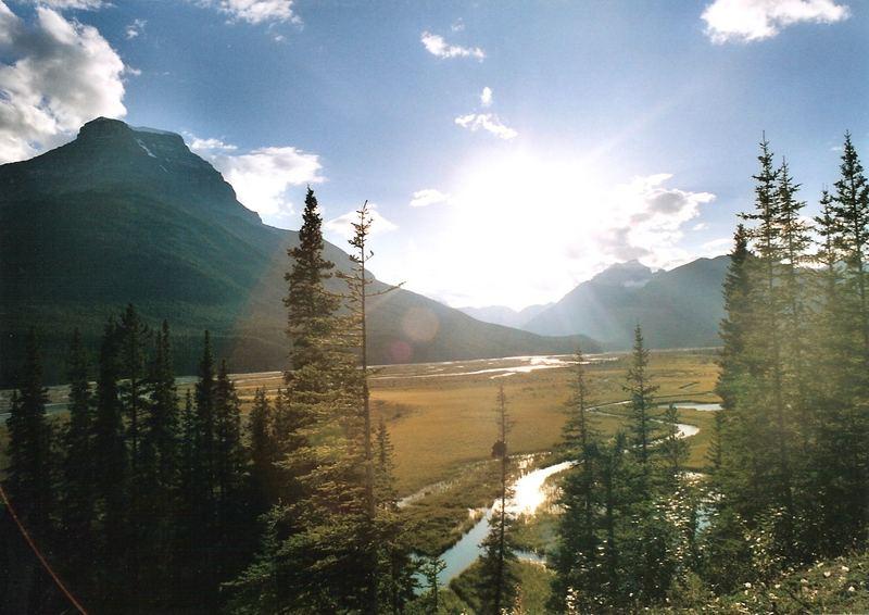 Jasper National Park - Saskatchewan River