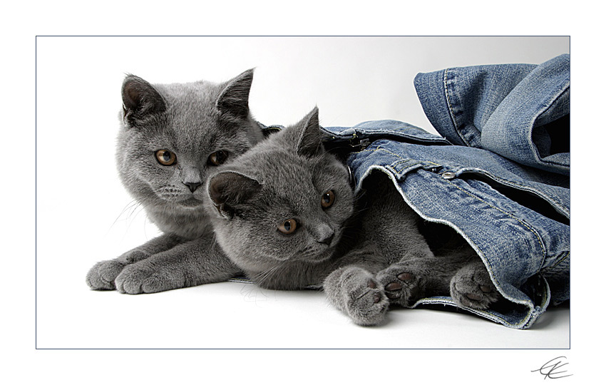 - jeans on -