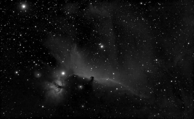 Jede Menge reiner Wasserstoff - IC 434 im Orion
