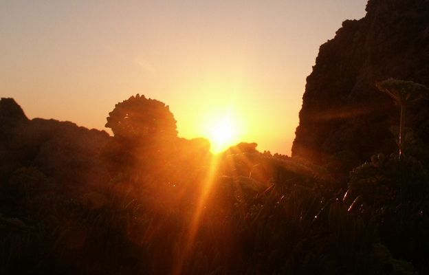 Jeden Tag geht die Sonne auf