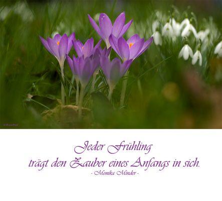 *Jeder Frühling....*