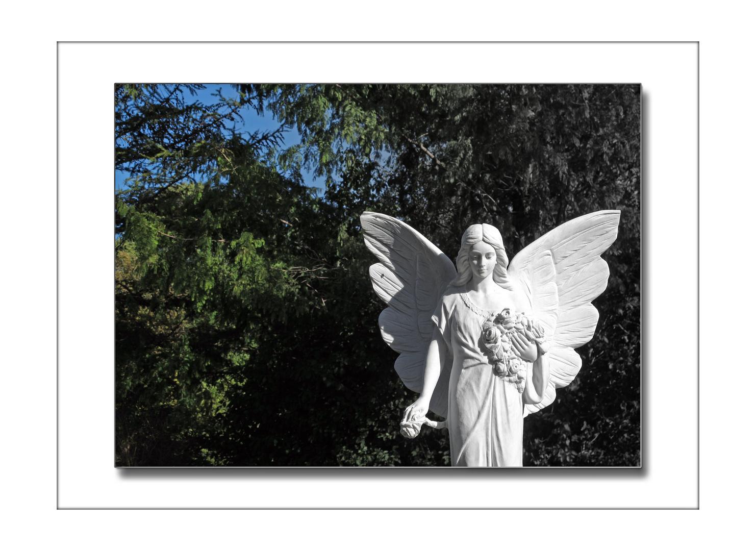 Jeder Mensch hat einen Engel.