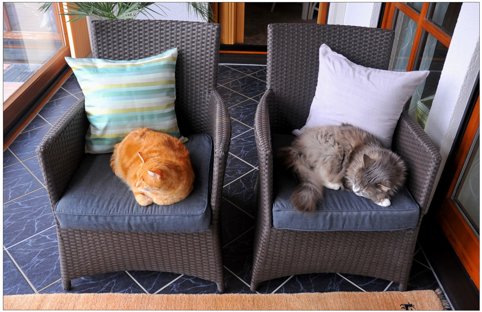 Jeder von uns zweien hat seinen Platz (cada uno de nosotros dos tiene su propio sitio)