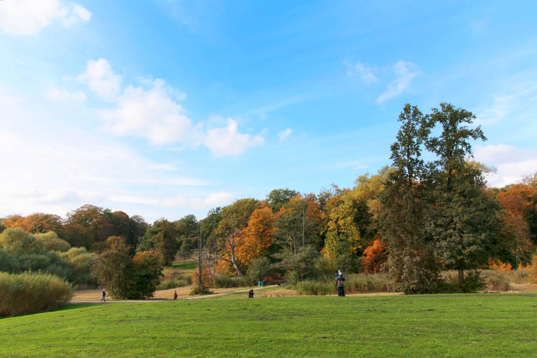 Jenisch Park