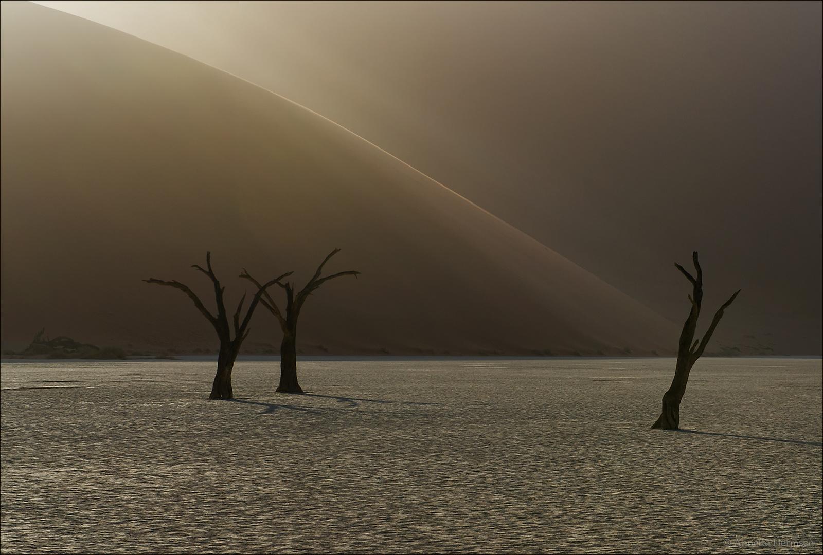 Jenseits von Afrika [11] - Lonesome Dancer