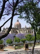 Jerez, Kathedrale + Bodega Tio Pepe