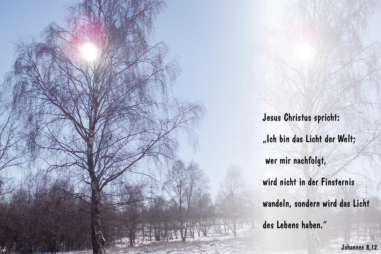 Jesus - das Licht der Welt....Johannes 8,12