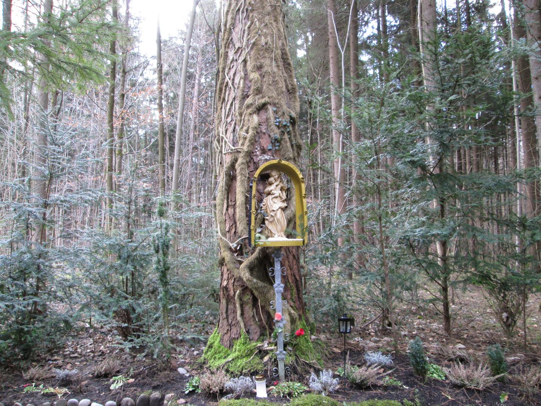 Jesus & Maria im Wald 1-2