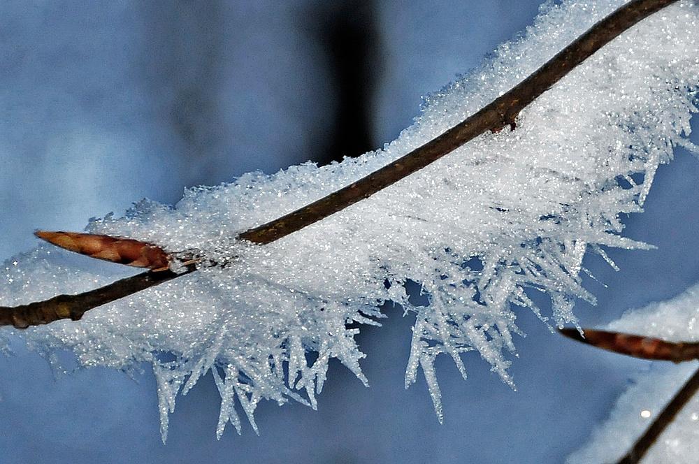 Jetzt hat am Arber der Winter echt angefangen!