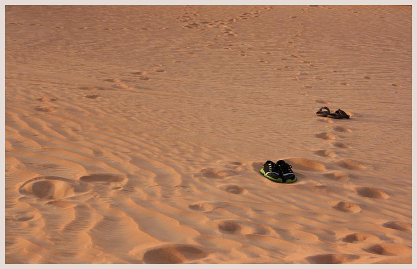 ...jetzt in die Wüste...