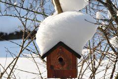 Jetzt ist er auch bei uns....... der Schnee .....