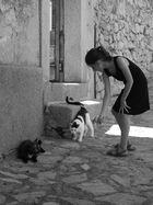 Jeu de chats