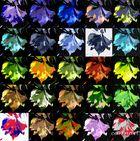 Jeu de couleurs sur feuille