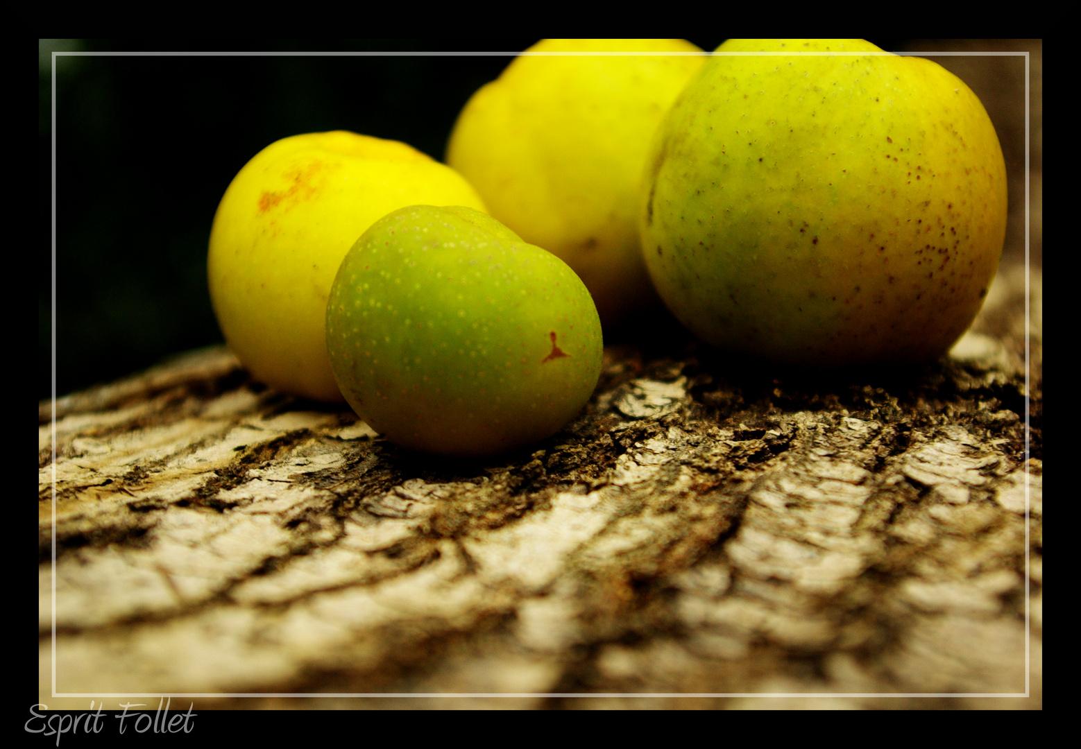 jeu de pomme