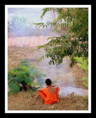 Jeune moine bouddhiste