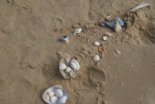 jeux de plage !