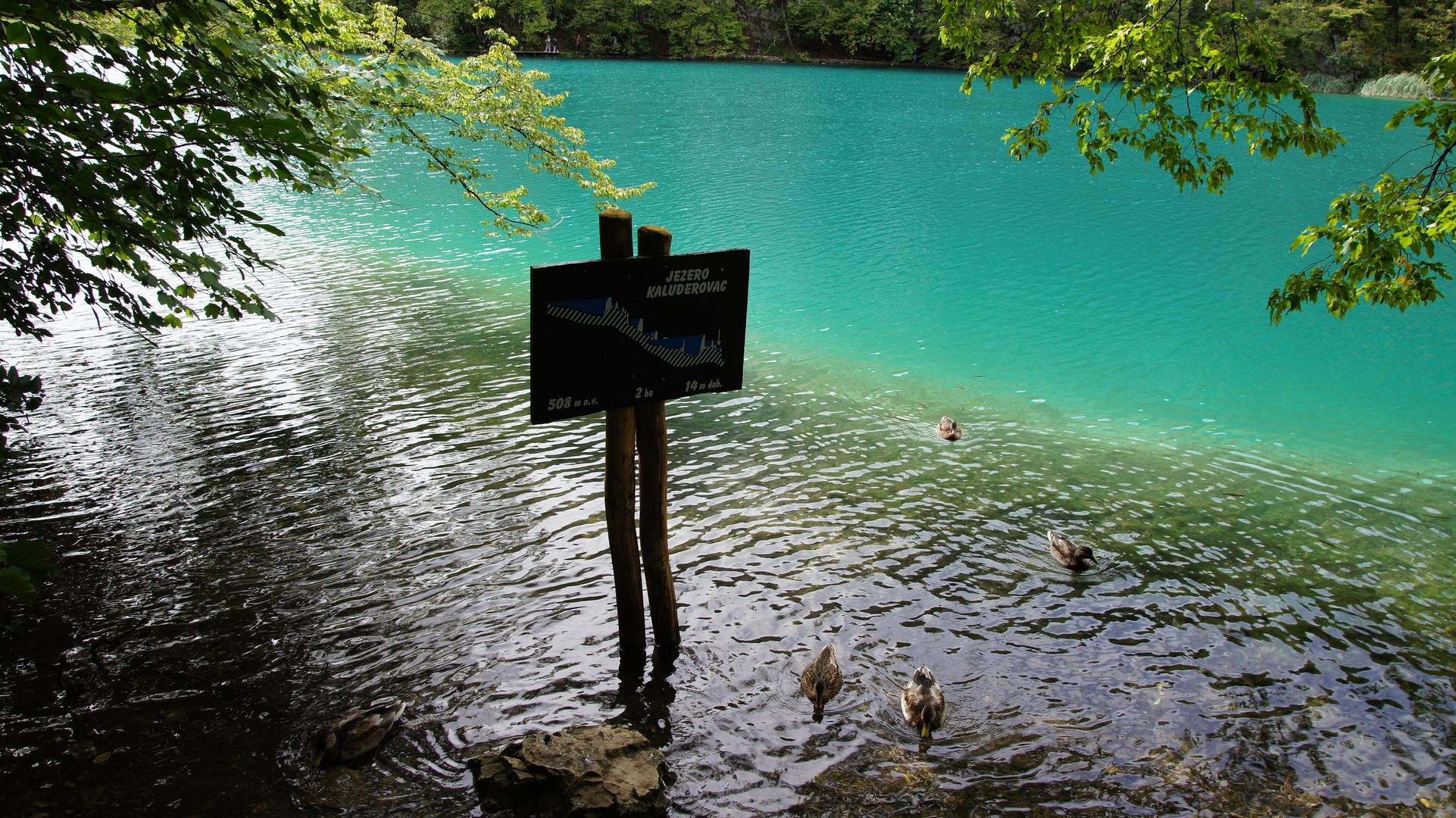 Jezero Kaluderovac (einer der Plitvicer Seen)