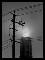 Jin Mao Tower - Shanghai