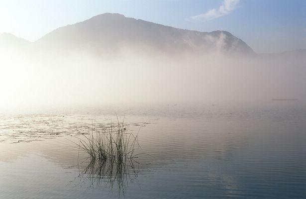 Jochberg im Nebel