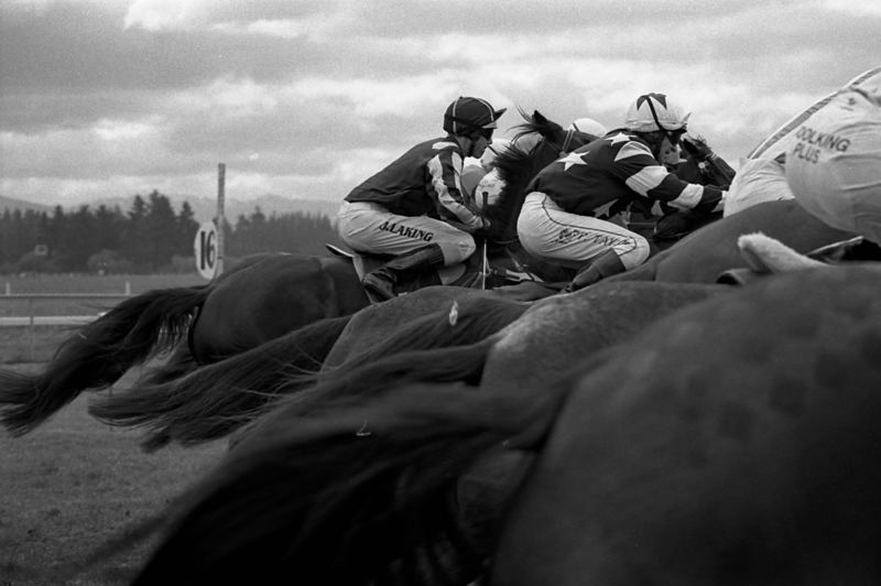 jockeys, neuseeland