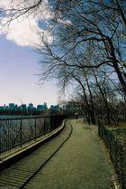 Jogger im Central Park