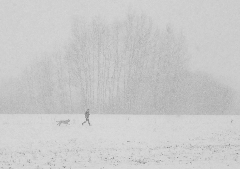 Jogger mit Hund im Schneetreiben
