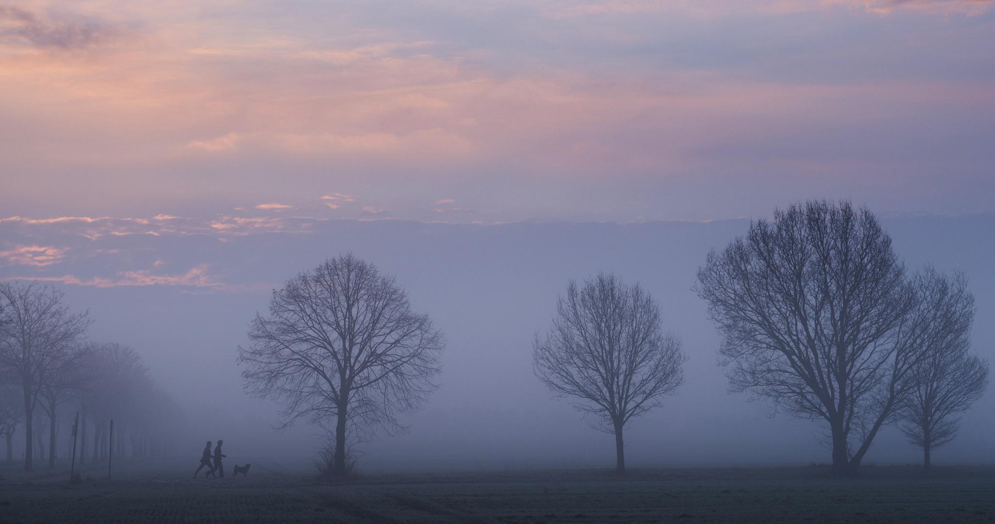Jogging am Morgen mit Hund