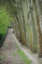 jogging parc de sceaux