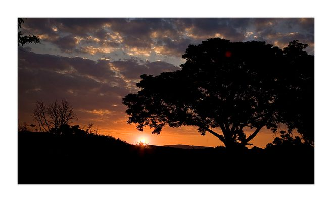 Johannesburg Sunset 3