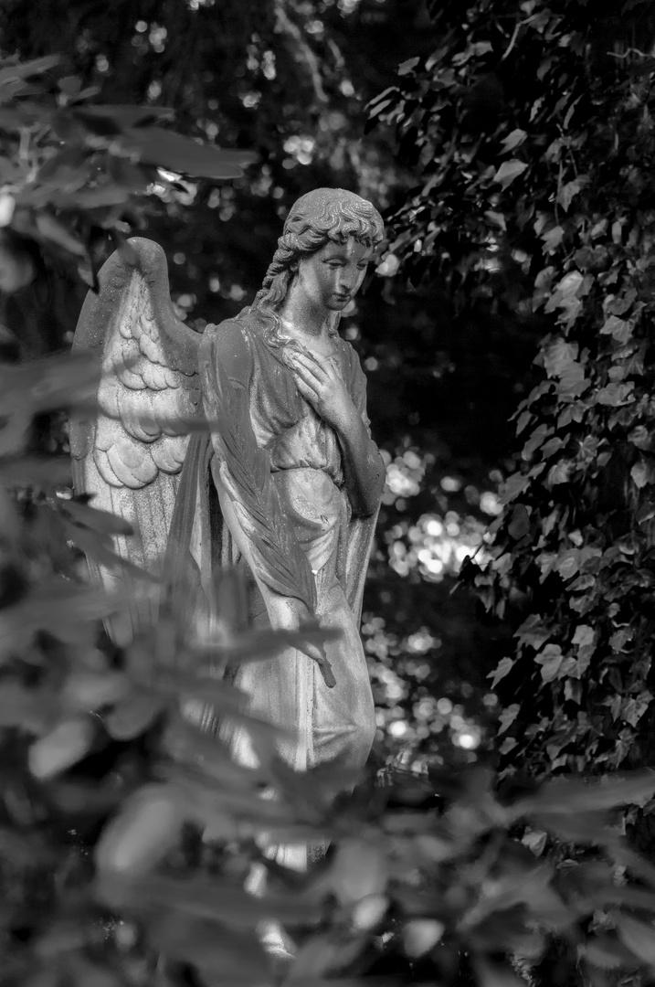 Johannisfriedhof - 2