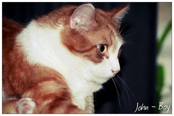 John-Boy