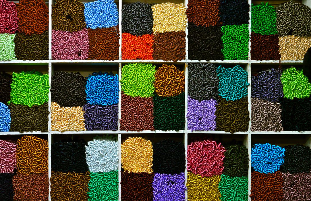 Joie des couleurs