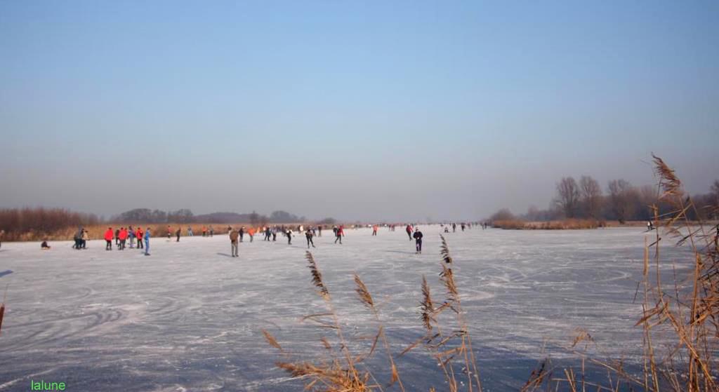 joie d'hiver....winter amusement
