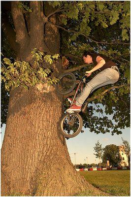 Josh Stricker doing Treeride