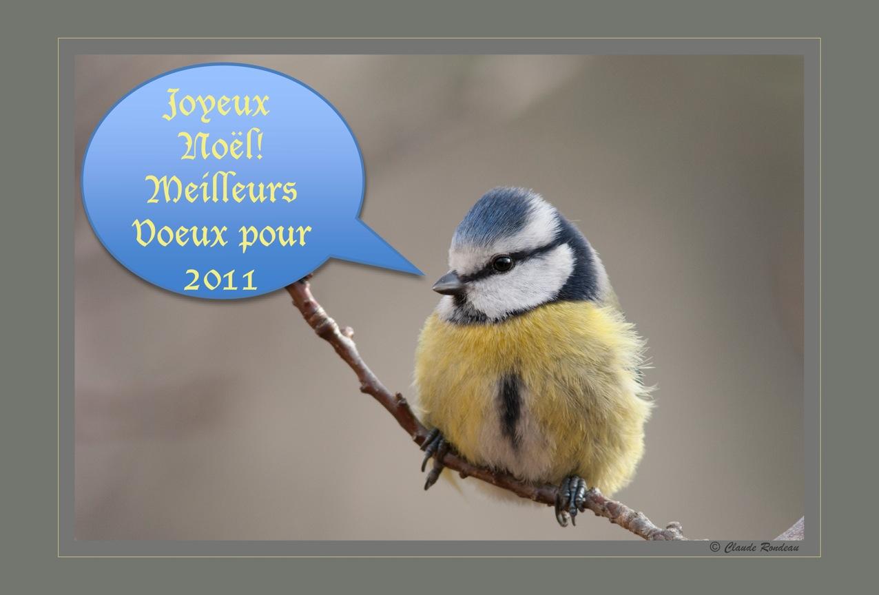 Joyeuses Fêtes et Meilleurs Vœux à toutes et à tous!