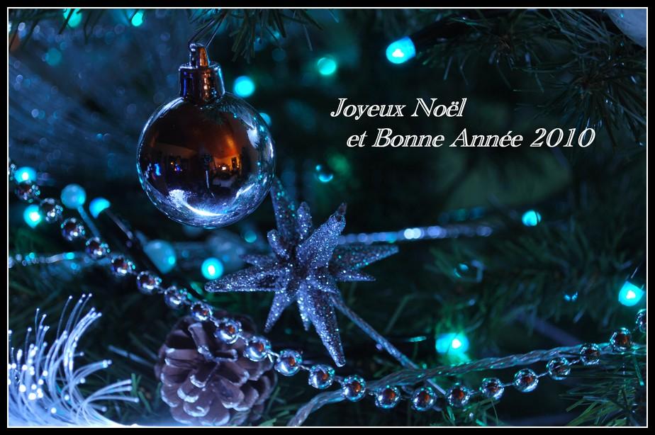 Joyeux Noël et Bonne Année 2010