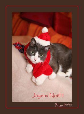 Joyeux Noël Fotocommunity ainsi qu'aux utilisateurs !!