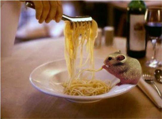 Judy beim Italiener