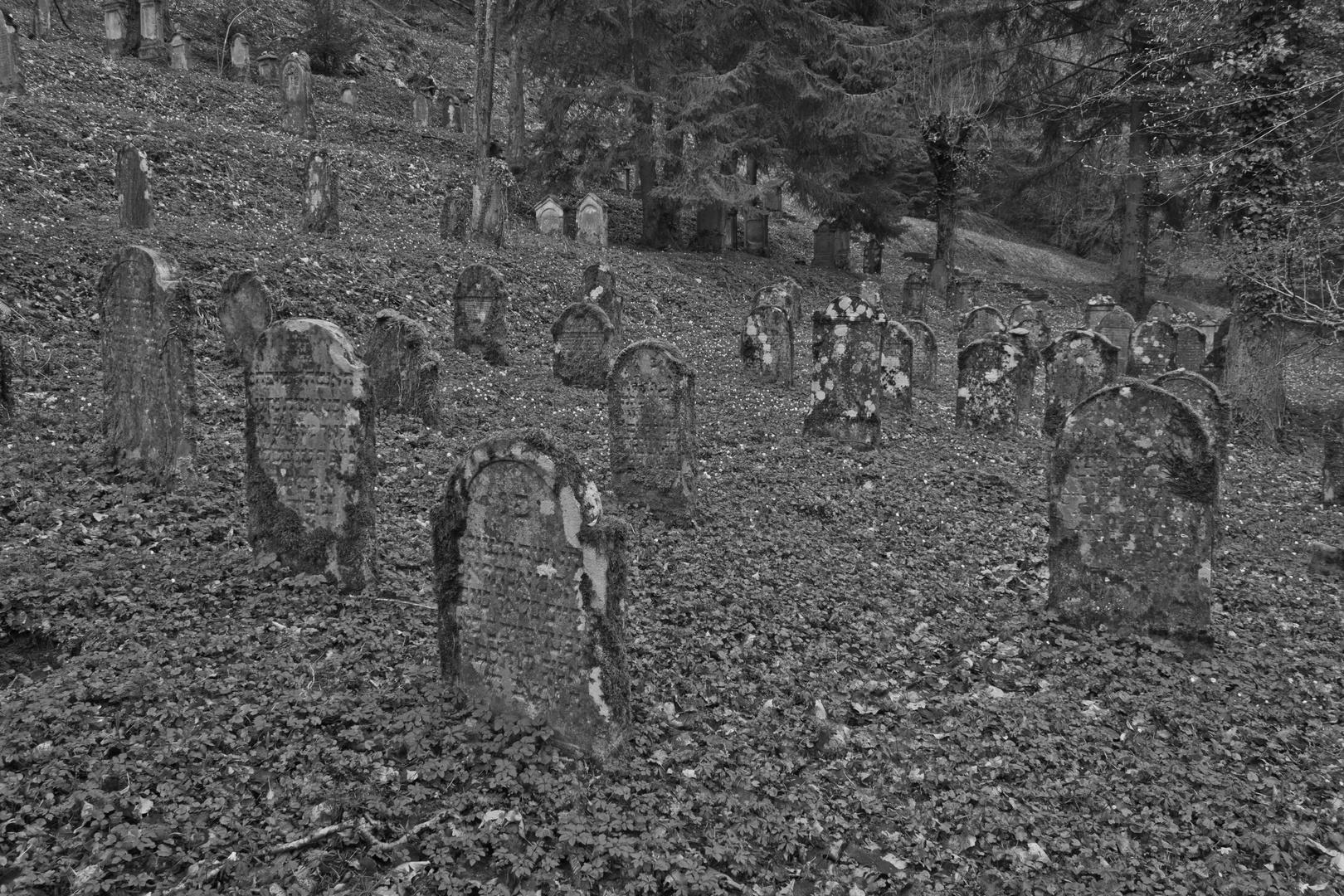 Jüdischer Friedhof 4