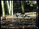 Jüdischer Friedhof Altona ...