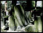 Jüdischer Friedhof Altona .....