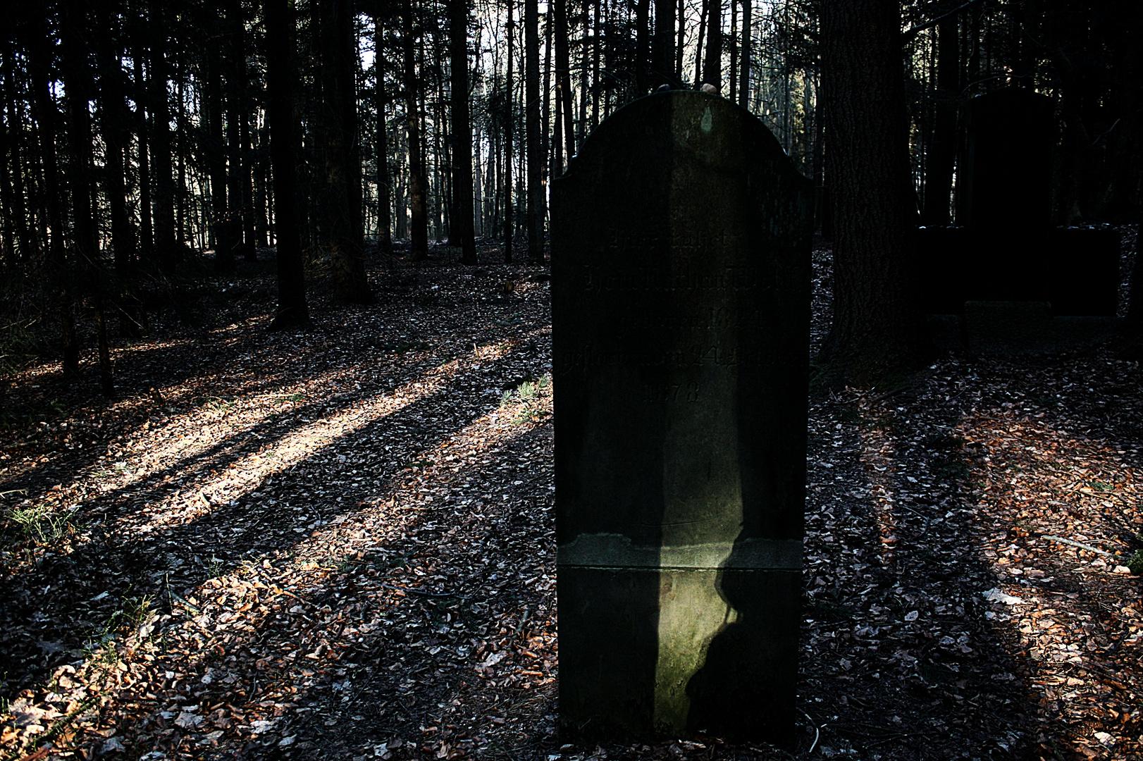 Jüdischer Friedhof bei Wingst