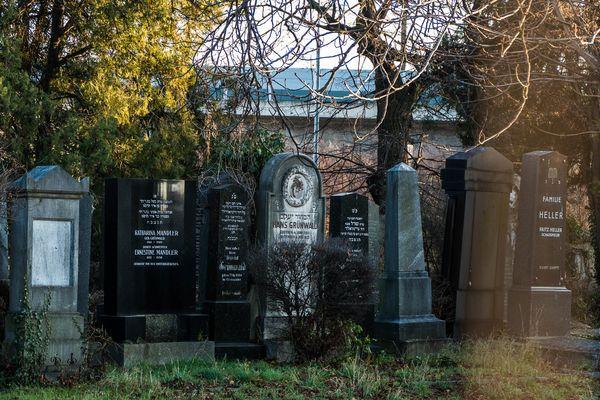 Jüdischer Friedhof in Floridsdorf (3)