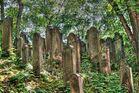 Jüdischer Friedhof in Hannover