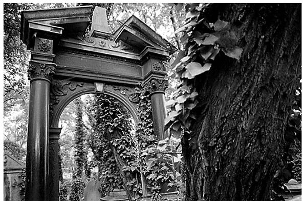 Jüdischer Friedhof in Oppeln (Polen)