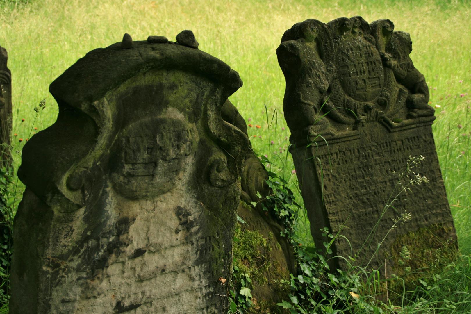 Jüdischer Friedhof IV